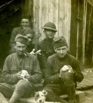 Soldiers of the 13th Regiment with a dog and litter of puppies.